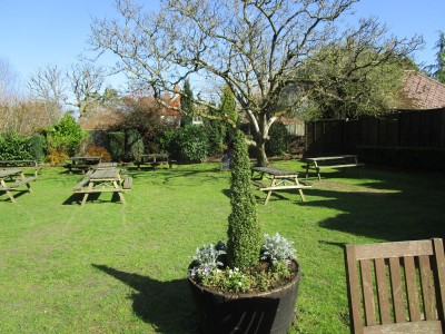 A3 Grayshott dog-friendly pub, Surrey - Driving with Dogs