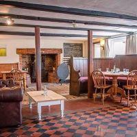 Iconic dog-friendly pub with amazing food, Suffolk - Suffolk dog-friendly pub and dog walk