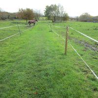 A417 dog-friendly pub and dog walk near Wantage, Oxfordshire - Oxfordshire dog-friendly pub and dog walk