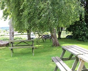 A37 Riverside dog walk and dog-friendly pub, Somerset - Dog walk and dog-friendly pub near Bristol.jpg
