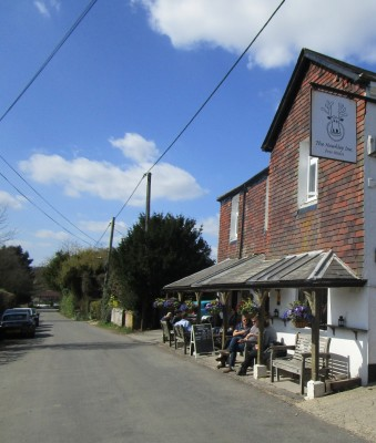 A3 dog-friendly village pub near Liss, Hampshire - Driving with Dogs