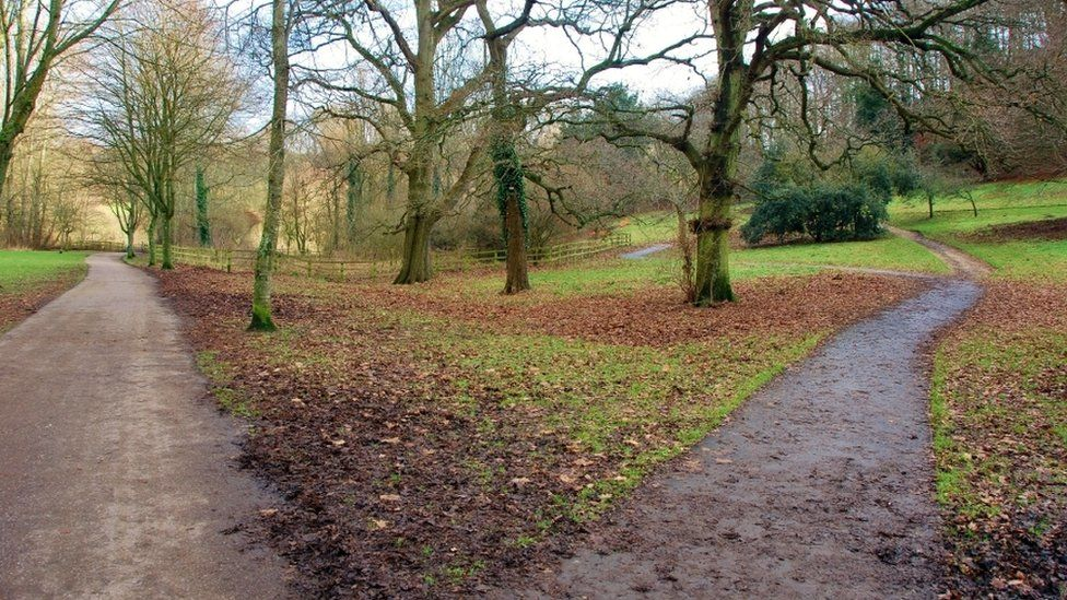 Country Park dog walk near the A30, Somerset - dog walks in a country park.jpg