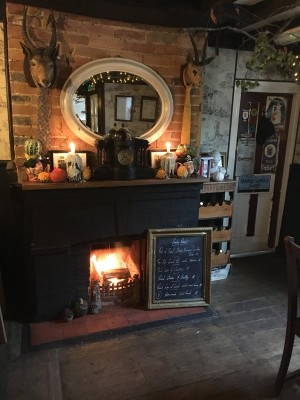 A269 Dog walk and dog-friendly pub, East Sussex - Driving with Dogs
