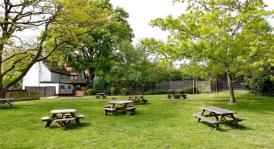 A327 dog friendly pub and dog walk near Wokingham, Berkshire - Driving with Dogs
