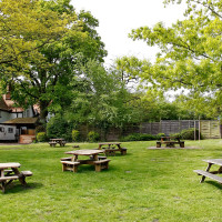 A327 dog friendly pub and dog walk near Wokingham, Berkshire - Berkshire dog walk and dog friendly pub