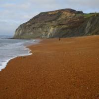 A35 Coast path walk and dog-friendly inn, Dorset - IMG_6720.JPG