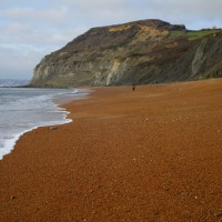 A35 Coast path walk and dog-friendly inn, Dorset - IMG_6720.JPG