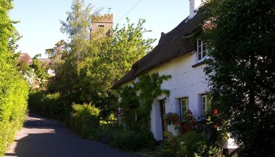 Dartmoor dog-friendly pub and B&B, Devon - Driving with Dogs