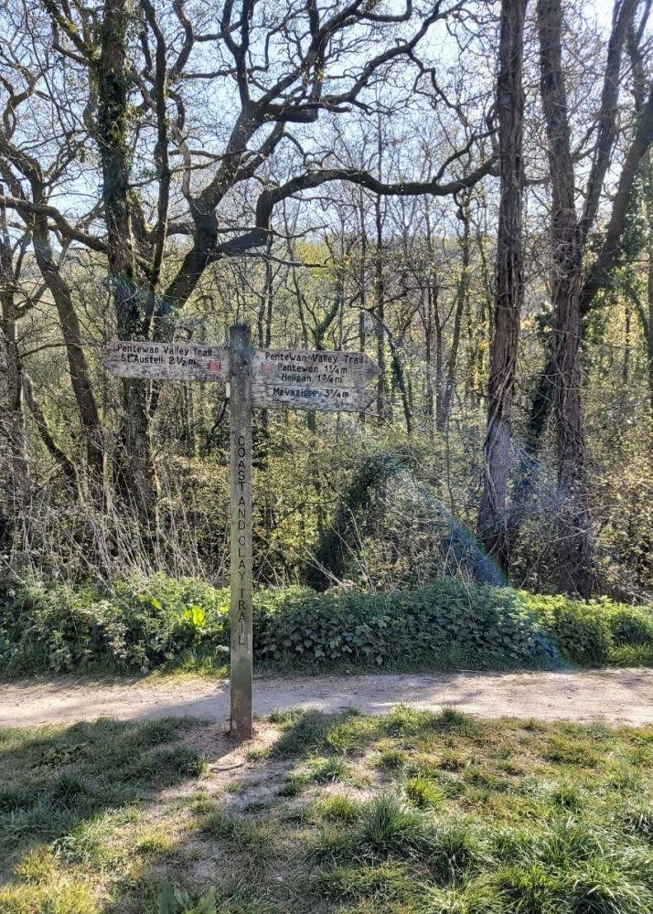 Pentewan Valley Trail plus Kings Wood, Cornwall - 20210426_094357.jpg