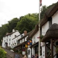 Dog-friendly pub and dog walks on the coast, Devon - Dog-friendly Devon coast walks.jpg