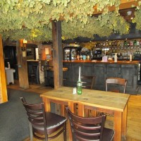 Ashford area dog-friendly pub and dog walk, Kent