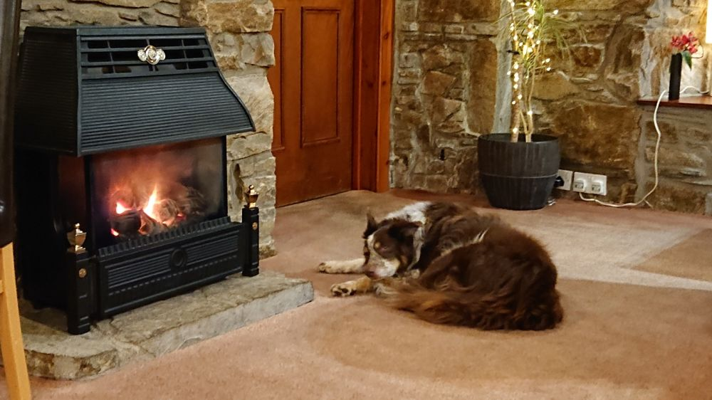 Pet-friendly Rosemount Hotel - Cairngorms, Scotland - DSC_0517.JPG