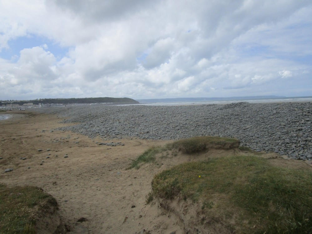 Dunes, beach and doggie delight, Devon - Devon dog walking places.JPG