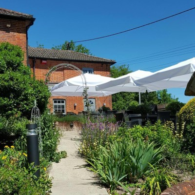 A34 literary dog walk and dog friendly pub, Hampshire - Driving with Dogs