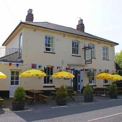 A272 dog-friendly country inn, West Sussex - Driving with Dogs