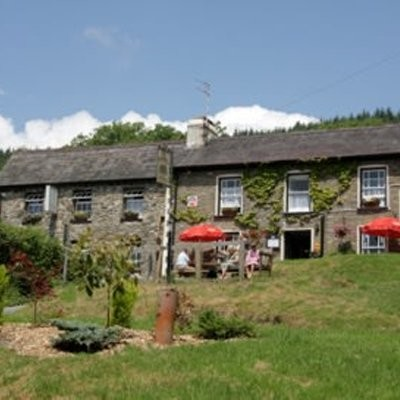 Dog-friendly B&B near Llandovery - A483, Wales - Driving with Dogs