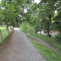 M6 Junction 36 riverside dog walk and pub, Cumbria - Dog walks in Cumbria