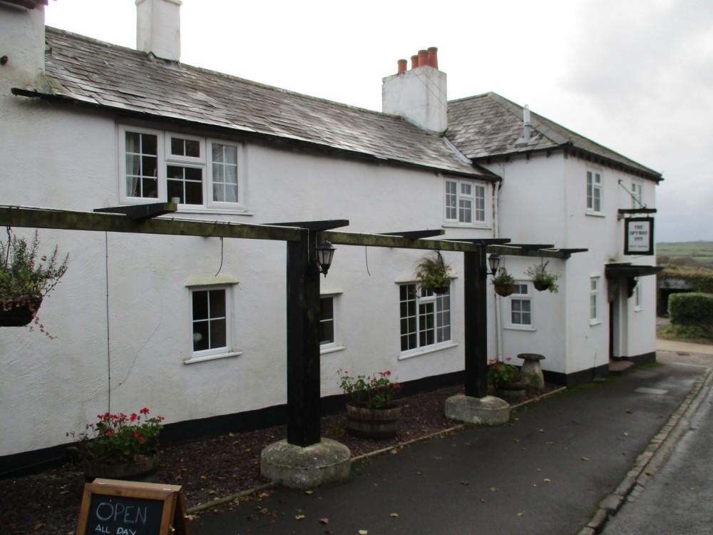 A35 dog walk and traditional dog-friendly pub, Dorset - IMG_0438.JPG