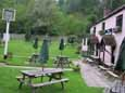 Dog-friendly pub and walkies wonderland, West Sussex - sussex dog walks and great pubsjpg