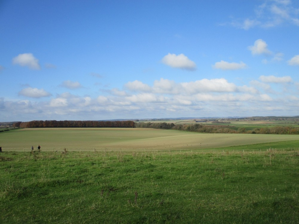 A350 Big dog walk in prehistory, Dorset - IMG_0098.JPG