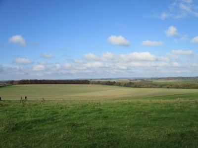 A350 Big dog walk in prehistory, Dorset - Driving with Dogs