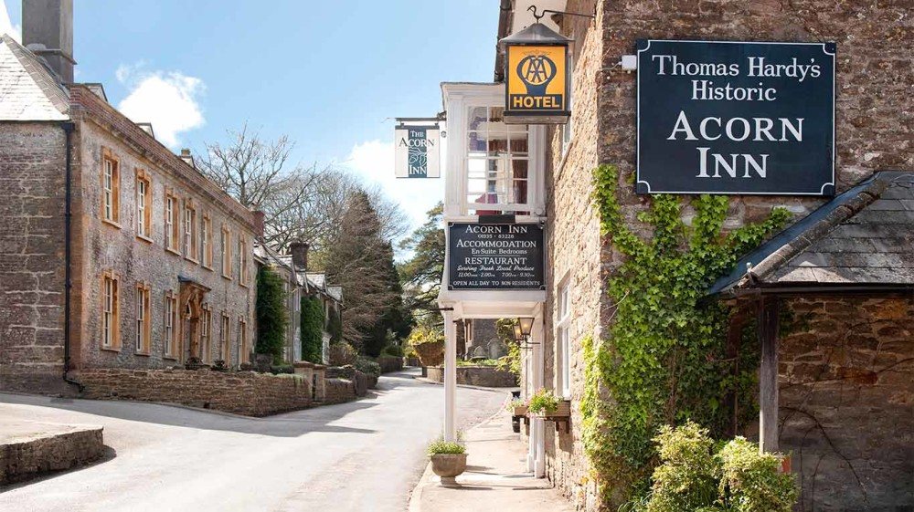 Evershot dog-friendly inn and dog walk, Dorset - Dorset dog-friendly pub and dog walk