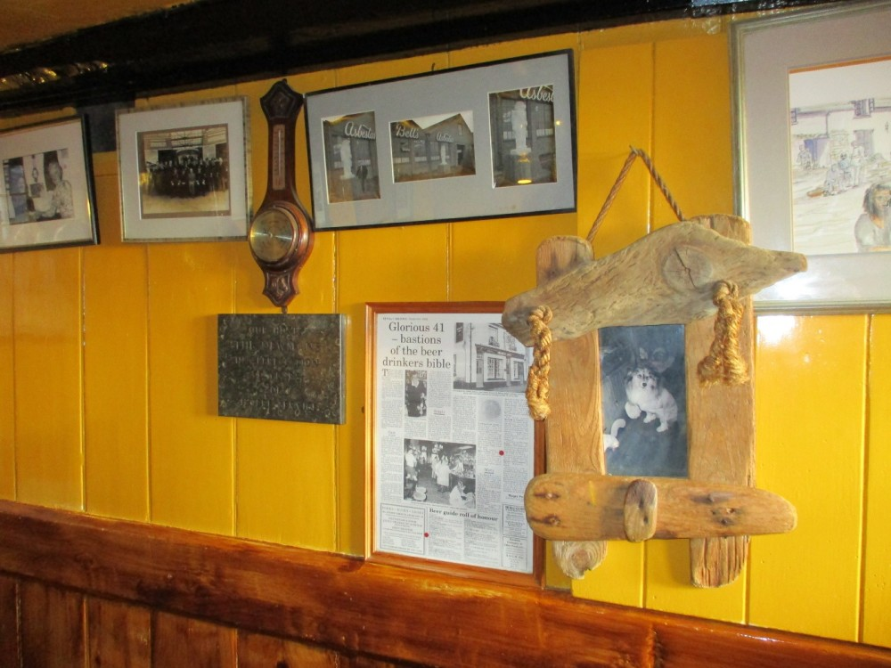 Really good dog walks and a quirky pub near Swanage, Dorset - IMG_0318.JPG