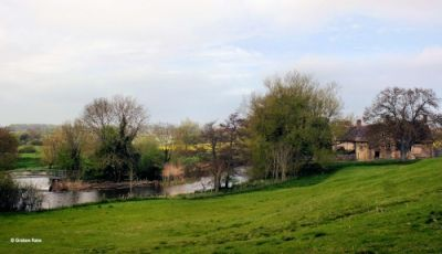 A357 Interesting dog walk and dog-friendly country inn, Dorset - Driving with Dogs