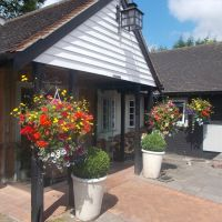 Ancient forest dog walk and dog-friendly pub near Chigwell, Essex - Essex dog-friendly pub and dog walk