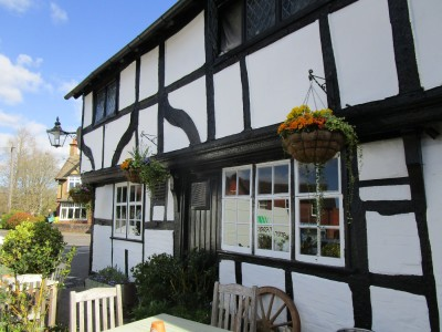 A281 Wonersh dog-friendly pub, Surrey - Driving with Dogs