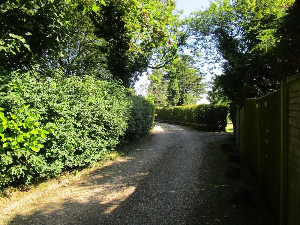 Chinnor dog walk and pub, Buckinghamshire - Chilterns dog walk and dog-friendly pub