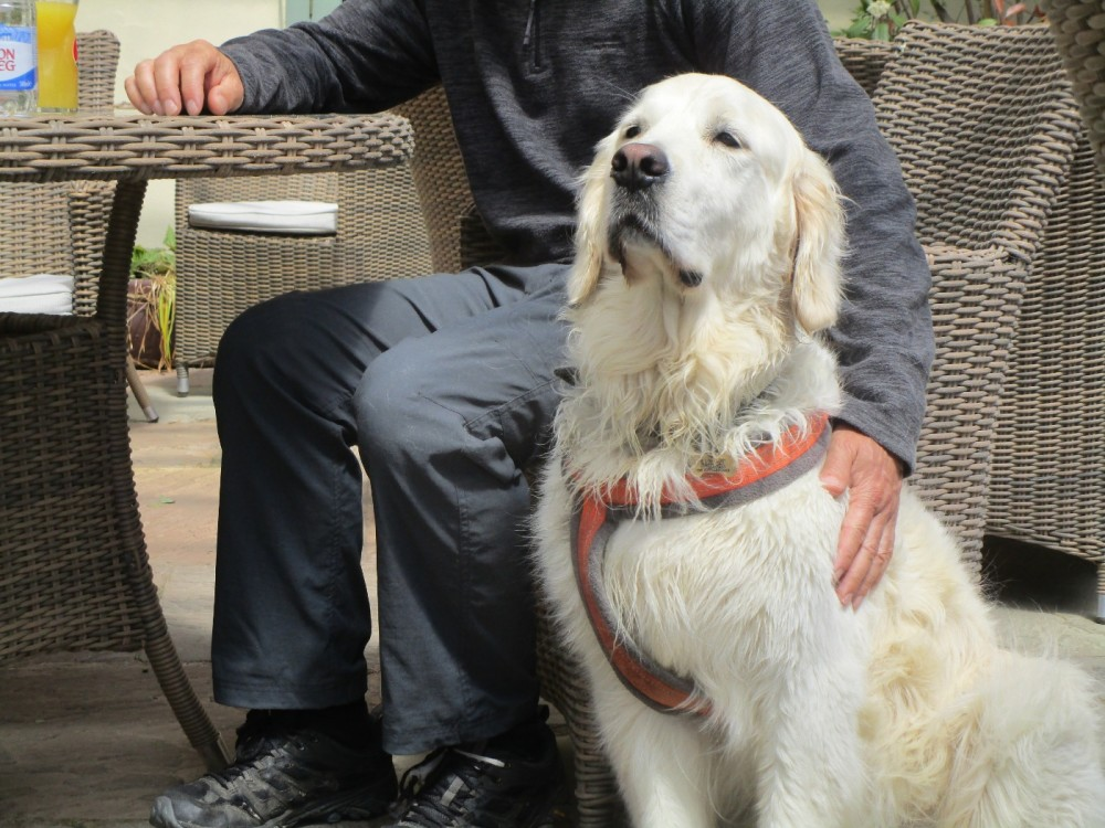 A458 dog-friendly refreshments, Wales - dog-friendly pubs and dog walks in Wales.JPG