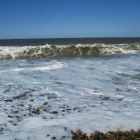 Cley next the Sea dog-friendly beach, Norfolk - Norfolk dog-friendly beaches