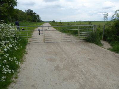 Nocton hard-surface accessible dog walk, Lincolnshire - Driving with Dogs