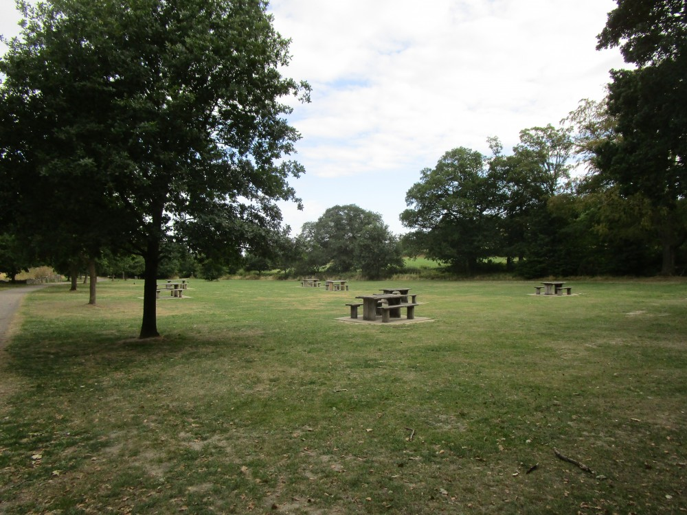 Beacon Hill dog walk near Loughborough, Leicestershire - Dog walks in Leicestershire