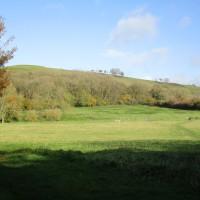 A352 dog walk and dog-friendly refreshments, Dorset - IMG_6238.JPG