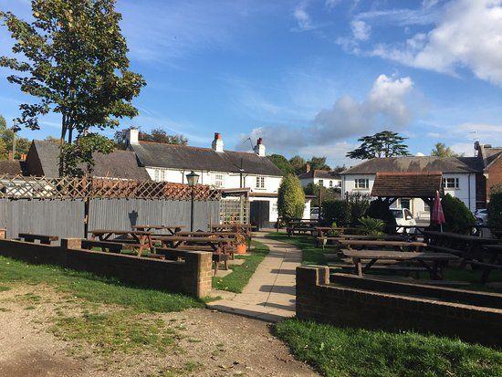 A3 dog-friendly pub and dog walk near Woking, Surrey - Dog-friendly pub and dog walk near Woking