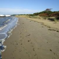 Bramblebush dog-friendly beach, Dorset - IMG_6421.JPG