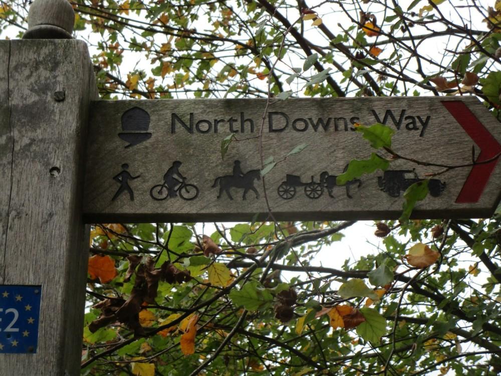Dog walk and dog-friendly pub near Ashford, Kent - Kent dog-friendly pubs with dog walks