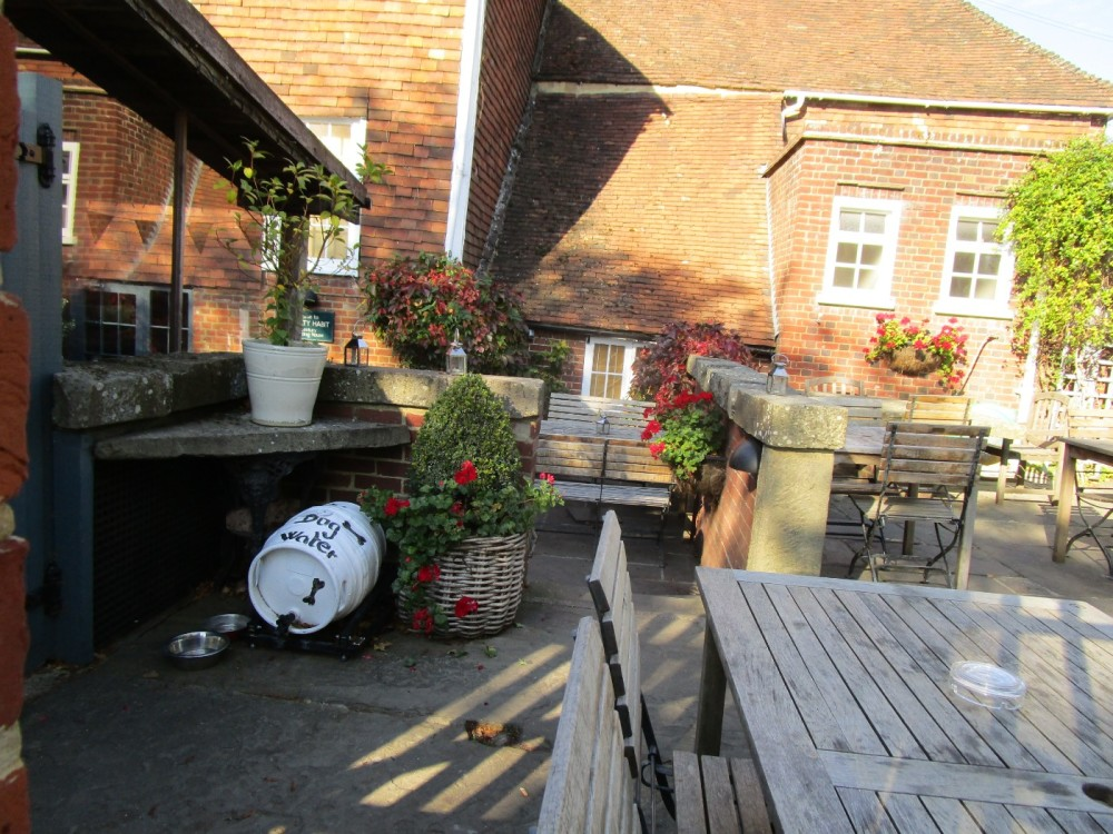 M20 Junction 8 dog-friendly pub and dog walk, Kent - Kent dog-friendly pubs with dog walks