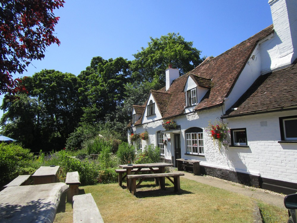 Dog walk and dog-friendly pub near Henley, Oxfordshire - Oxfordshire dog-friendly pub and dog walk