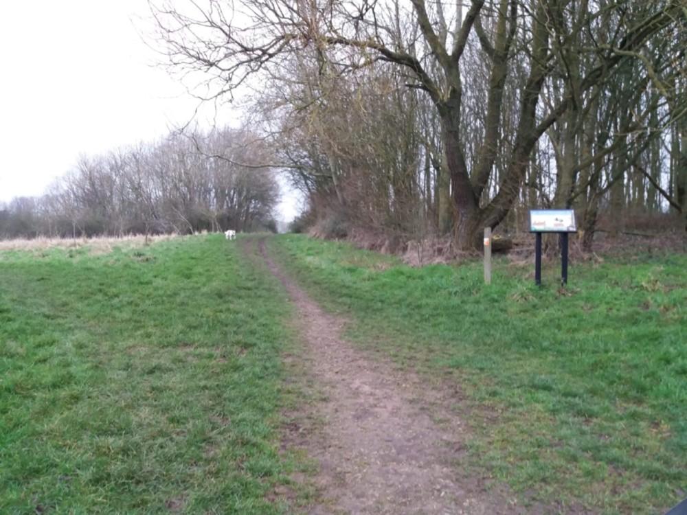 Thurcaston dog walks, Leicestershire - D9674E16-B097-4CF6-9617-68F20D37FD46.jpeg