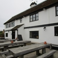 A252 dog-friendly pub and dog walk near Charing, Kent - Kent dog-friendly pubs with dog walks