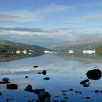 Forest and lochside dog walk, Scotland - dog walks and glamping.jpg