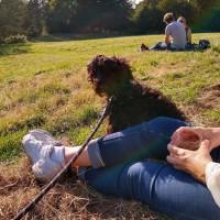 Richmond dog-friendly pub - The Roebuck, Surrey - IMG_20180916_170534815_HDR.jpg