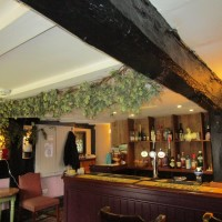 Dog-friendly pub and dog walks near Ashford, Kent - Kent dog-friendly pubs with dog walks