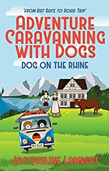 Dog on the Rhine