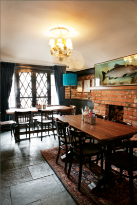 A27 Romsey dog-friendly pub and dog walk, Hampshire - Driving with Dogs