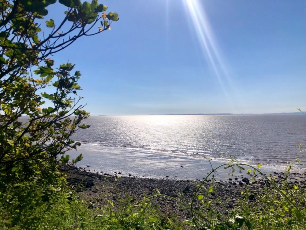 Little rocky bay - dog-friendly beach, North Somerset - F5E8C28D-4A3E-4E7E-B7E2-728CE183E2C4.jpeg