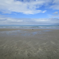 Poppit dog-friendly beach near Cardigan, Wales - Wales dog-friendly beach and dog walk